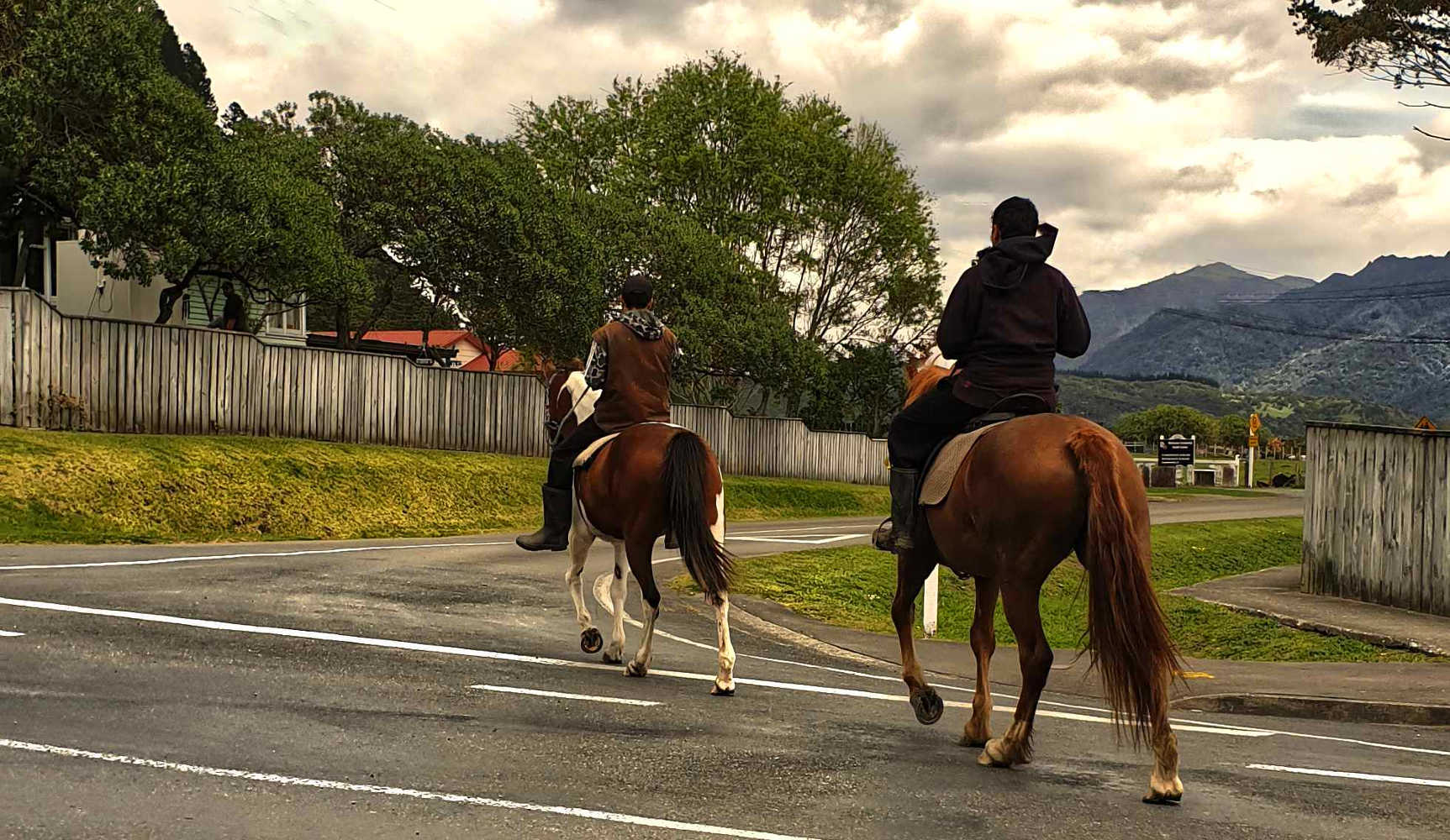 Te Araoa local transport option,New Zealand