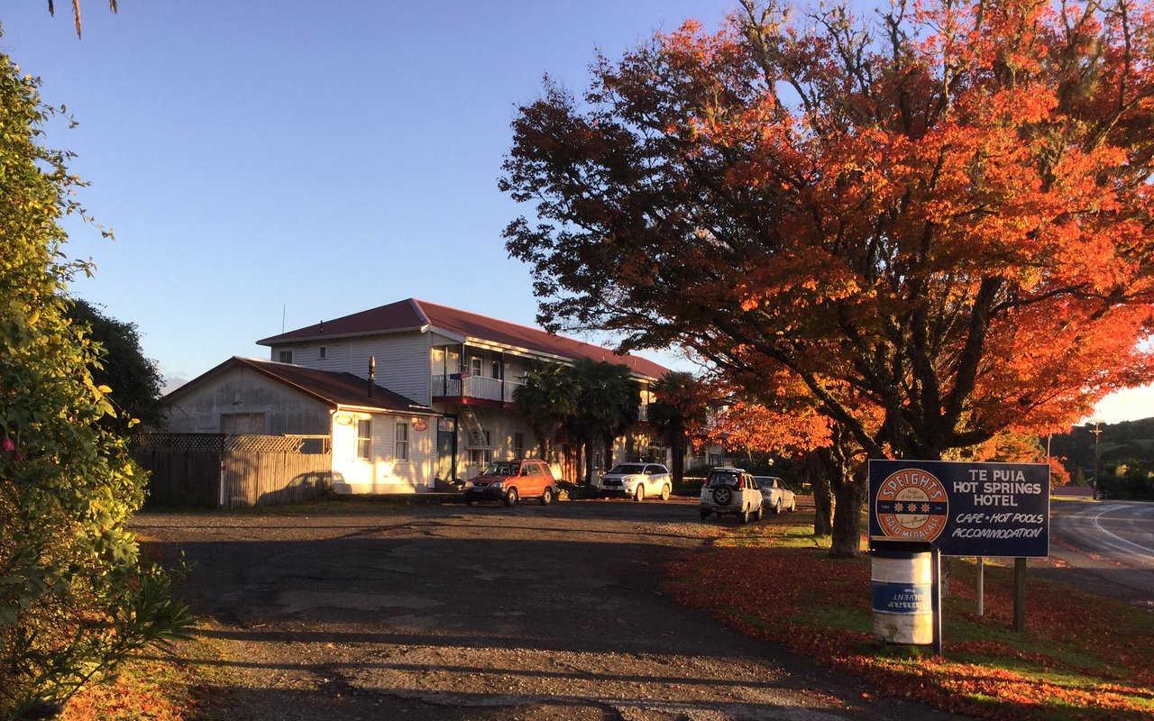 Te Puia hot springs hotel,New Zealand @Tripadvisor
