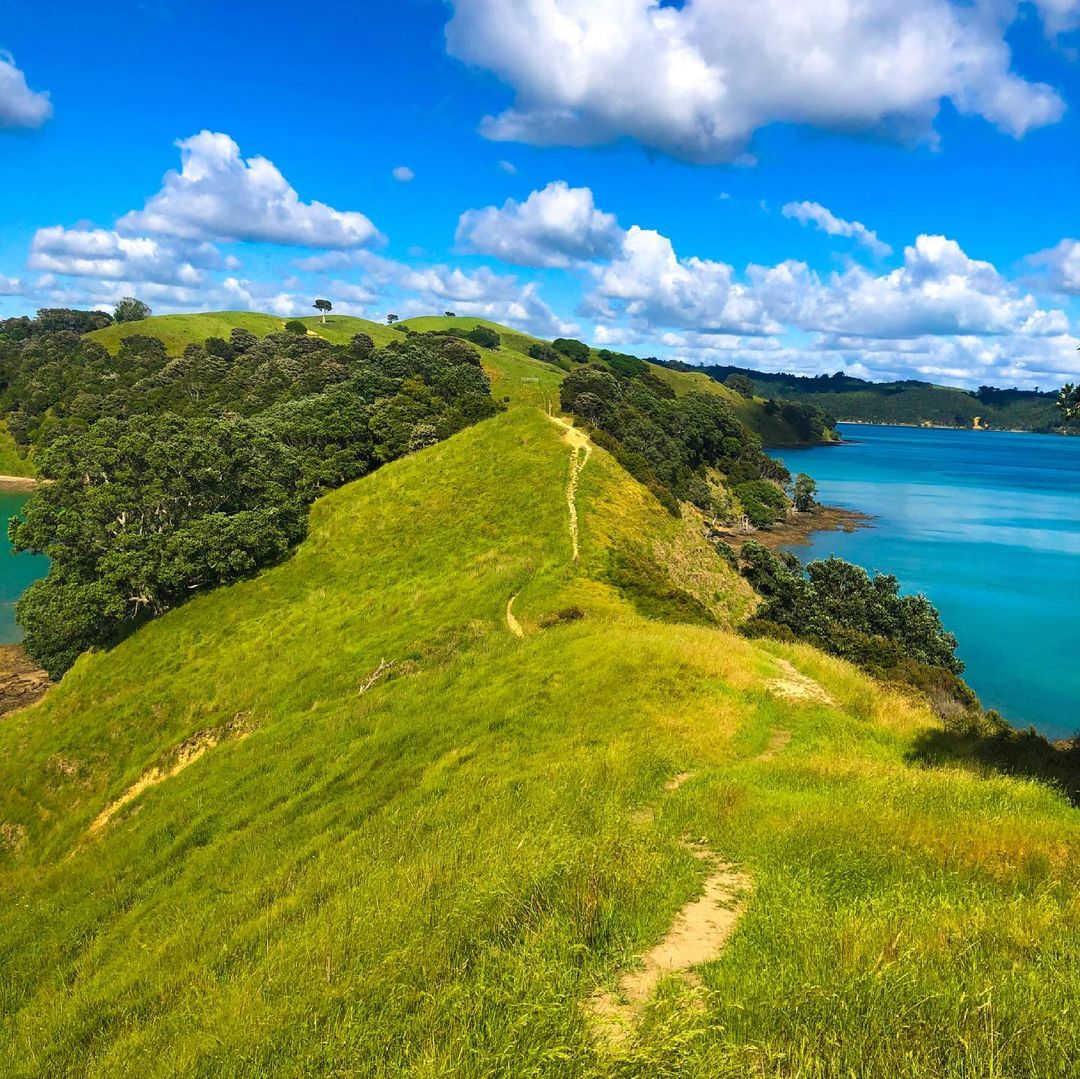Umupuia (Duders) Regional Park,New Zealand @wandering_poly