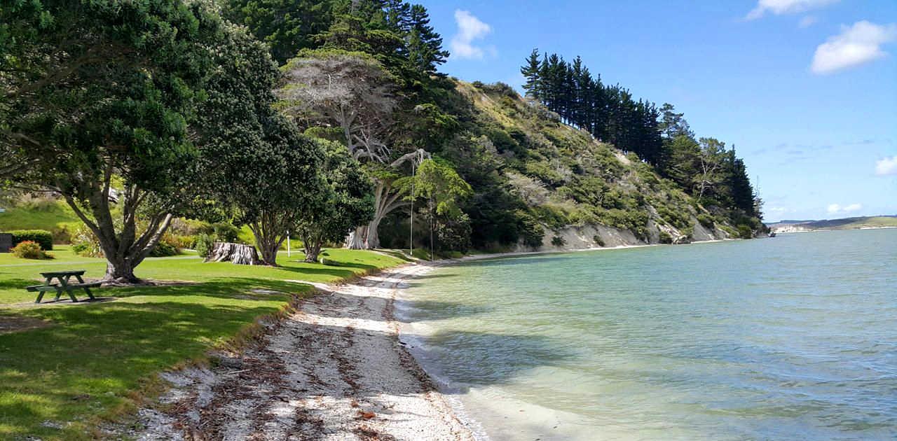 Whakapirau beach, Northland, New Zealand @Pinterest